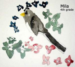 Mila bird