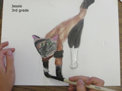 Jesse cat