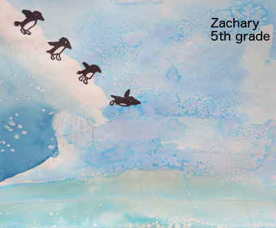 Zach penguins 2